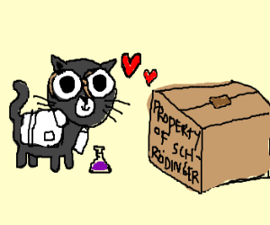 scientific cats love each other
