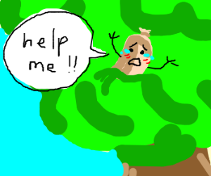 Baloney stuck up in a tree.