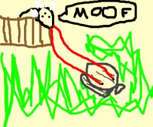 Clam kills mutant at Little Farm