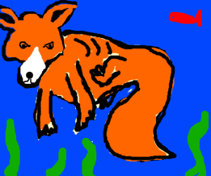 foxolotl