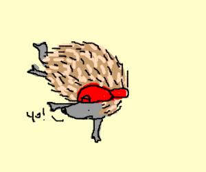 break dancing hedge hog