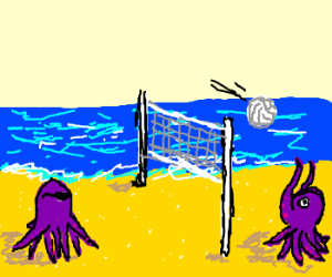Octopus Beach Volleyball