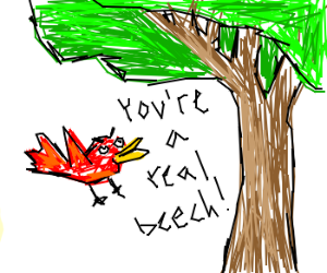 A red bird swears at a tree