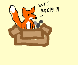 A fox in a box with some rocks!