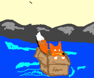 Fox In A Box Swims For His Life!