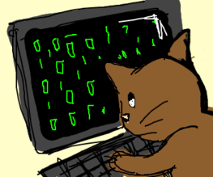 cat has mastered some computer skill