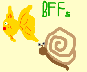 Fish and snail are best friends