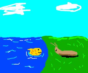 Goldfish and slug, best friends forever