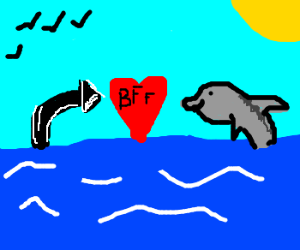 dolphin and arrow are best friends