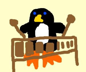 Penguin plays xylephone