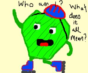 existential pickle chip on rollerblades