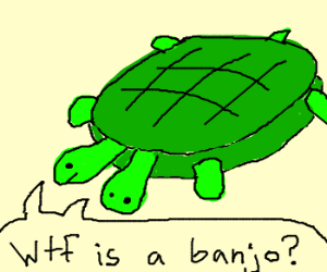 2 Headed Turtle wonders what a banjo is.