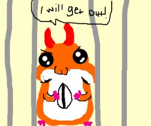 Devil Hamster, still caged