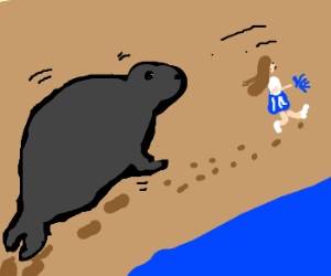 giant seal chases after a cheerleader