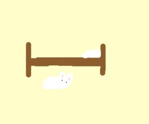 Bunny under a bed