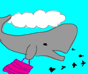 flying whale is going shopping
