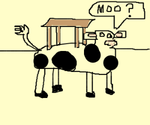 Clueless Cow with Table Ontop