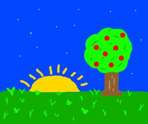 Garden of Eden at sunset