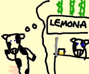 A cow has a money making idea