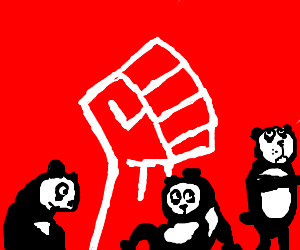 Panda Protest