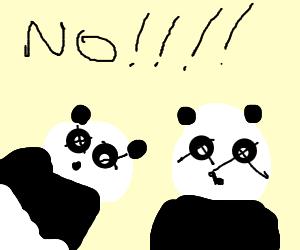 True horror of Panda pandemic revealed