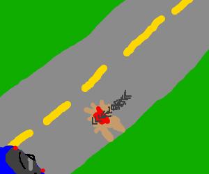 another poor animal victim of Road Kills