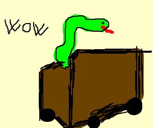 Snake in walking box is surprising