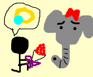 man proposes to unsure elephant