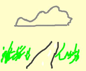 Virginia devours countryside
