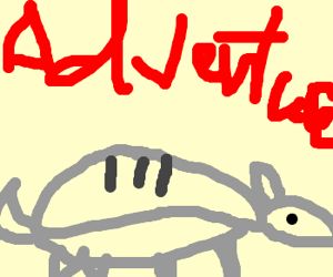 Armadillo goes adventuring