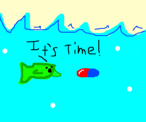 Cute fishy reminds you to take your meds