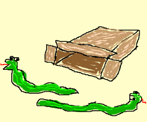A cardboard box with no snakes in it.