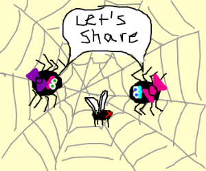 Two cute spiders share a captured fly.