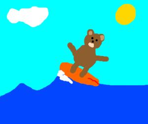 bear on upper side of a surfing board