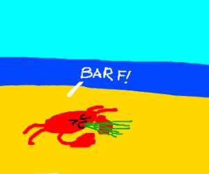 Crab pukes on beach