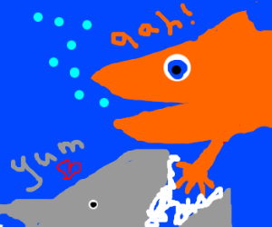 i love fish fingers