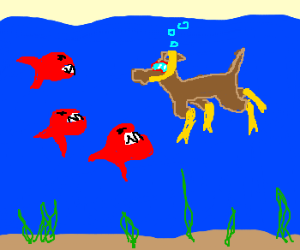 Scuba diving dog encounters piranhas