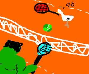 Hulk plays tennis against a chicken, fun
