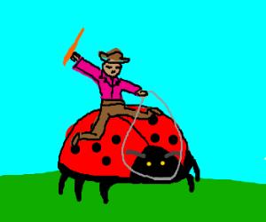 Man rides on giant ladybug