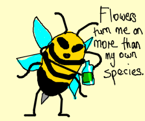 bee drinks truth serum