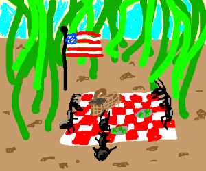 Ants have a Memorial Day picnic.