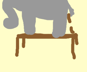elephant stands on a table and poops