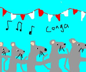 how to conga line dance