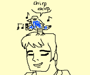 blue bird sings on a man's head.
