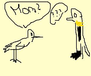 """Chicken: """"Mom?"""" Penguin: """"???"""""""