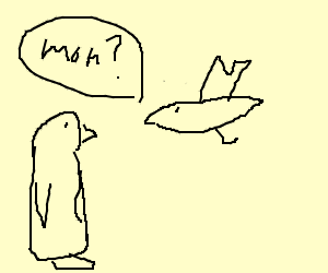 a seagul confuses pinguin for his mom.