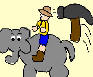 Ken hammered while riding elephant