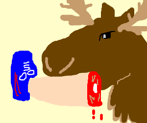 moose with a bleeding leg in mouth