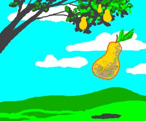 Falling Pear