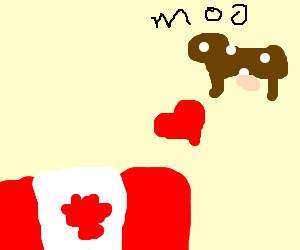 Canadians love cows